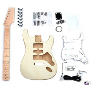 Diy electric guitar building tips and tricks desire for success for beginners its recommended to buy and build bolt on guitars whereas advanced electric guitar builders might want to opt for a set in model solutioingenieria Gallery