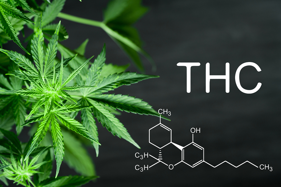 THC and its metabolites